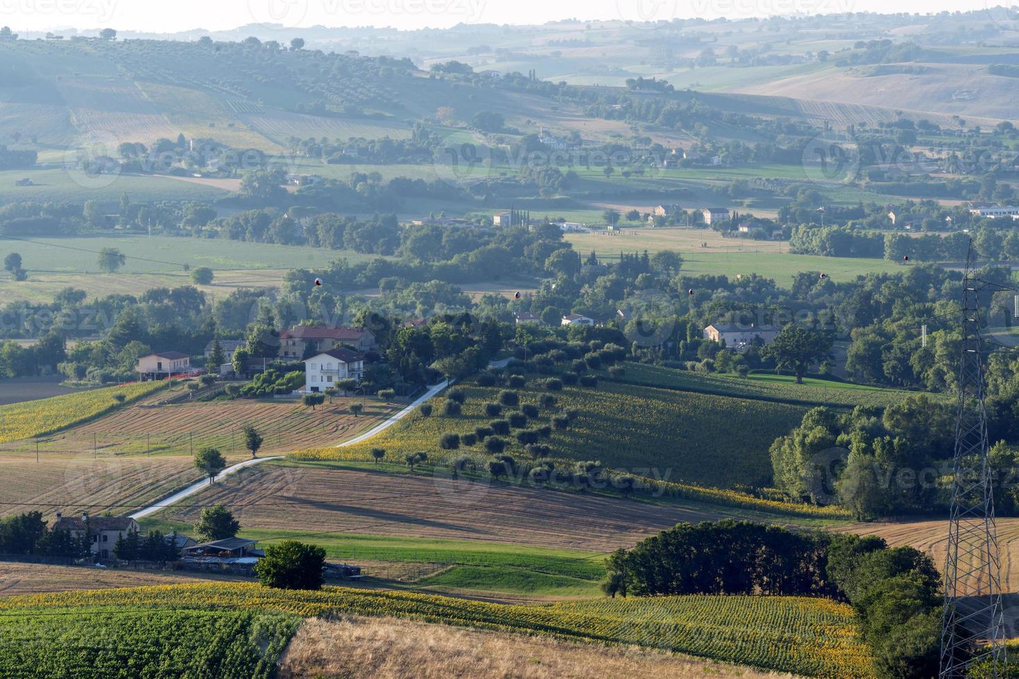 sommarlandskap i marscher (Italien) foto