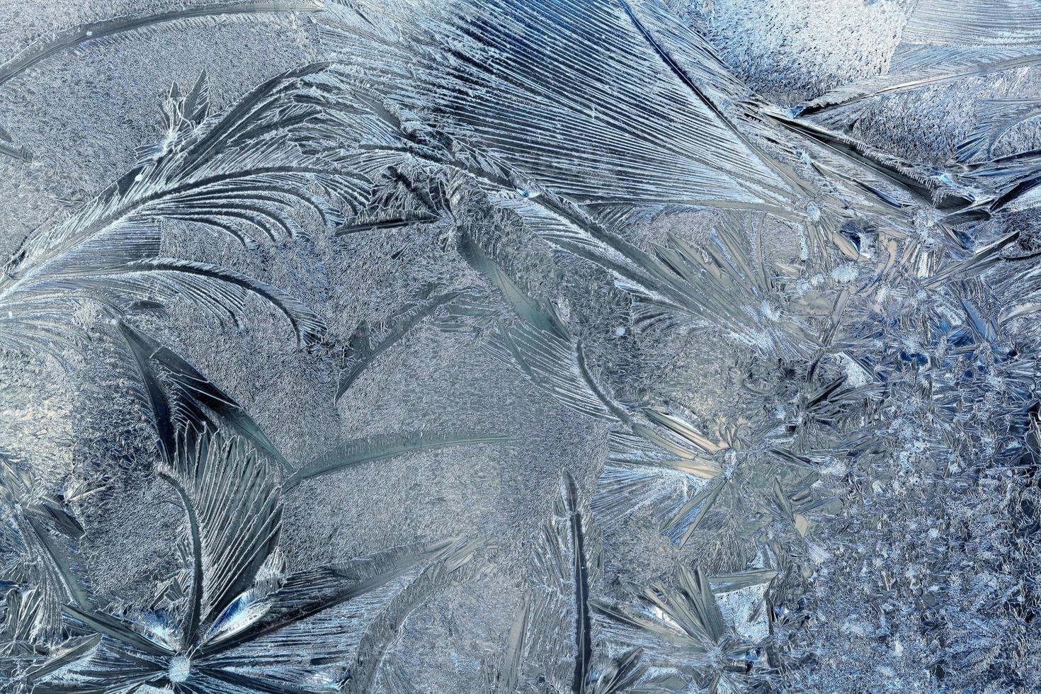 vintermönster foto