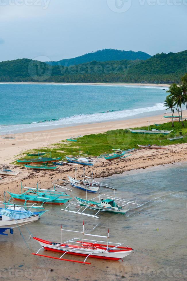 båtar och palmer vid sandstranden framför foto