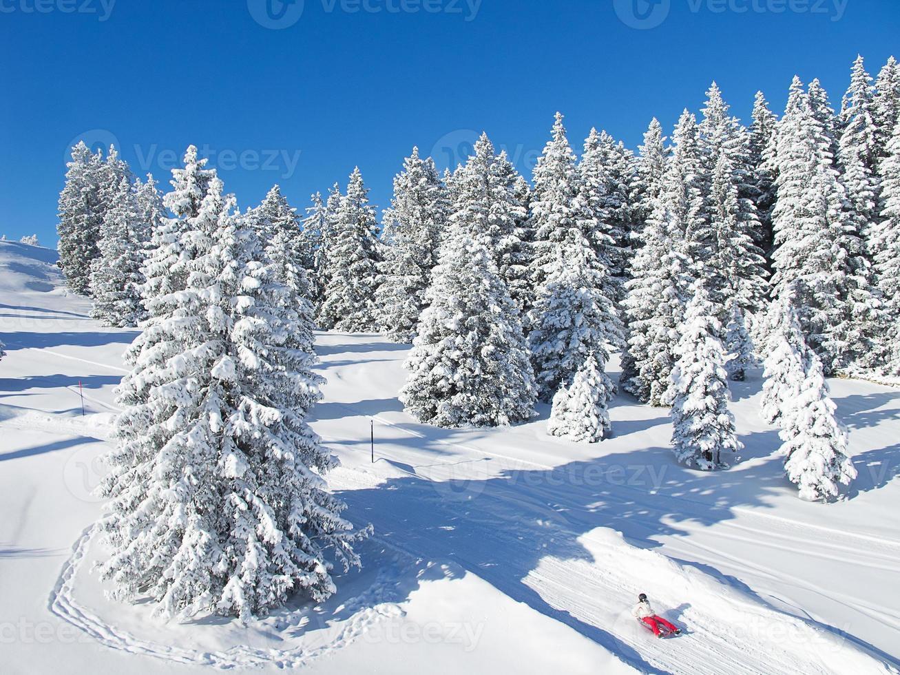 vintern i Alperna foto