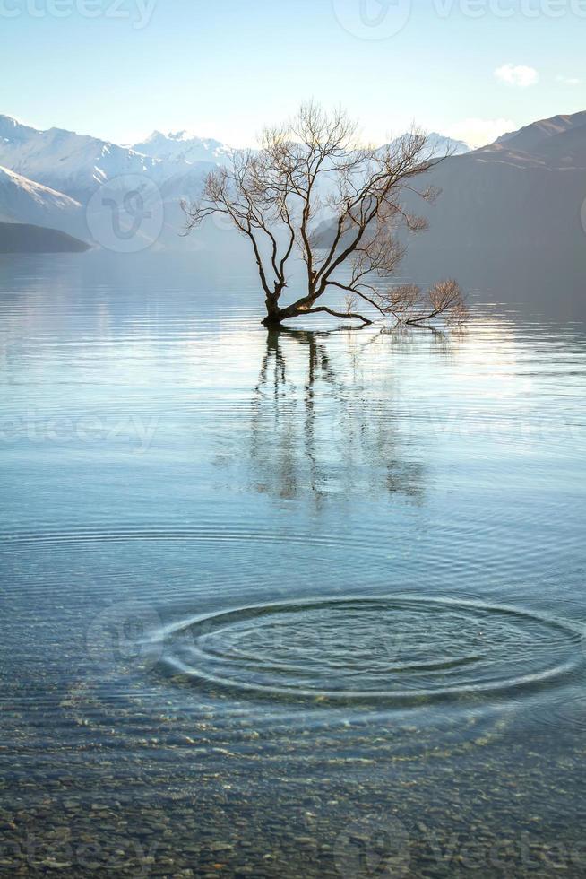 Lake Wanaka foto
