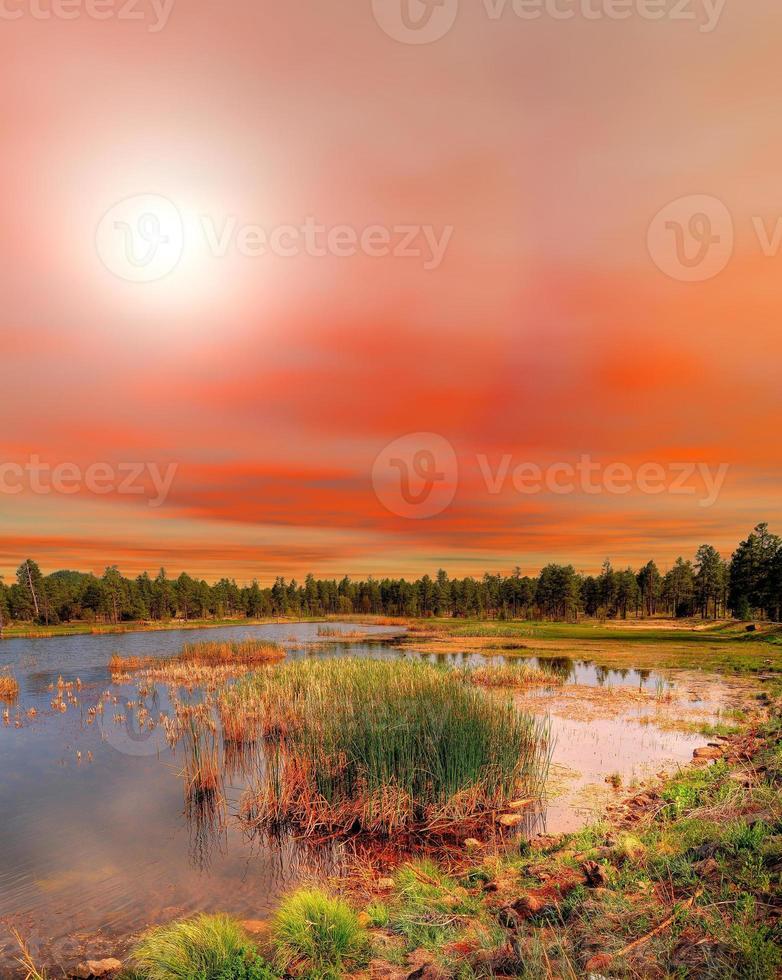 sjön solnedgång foto
