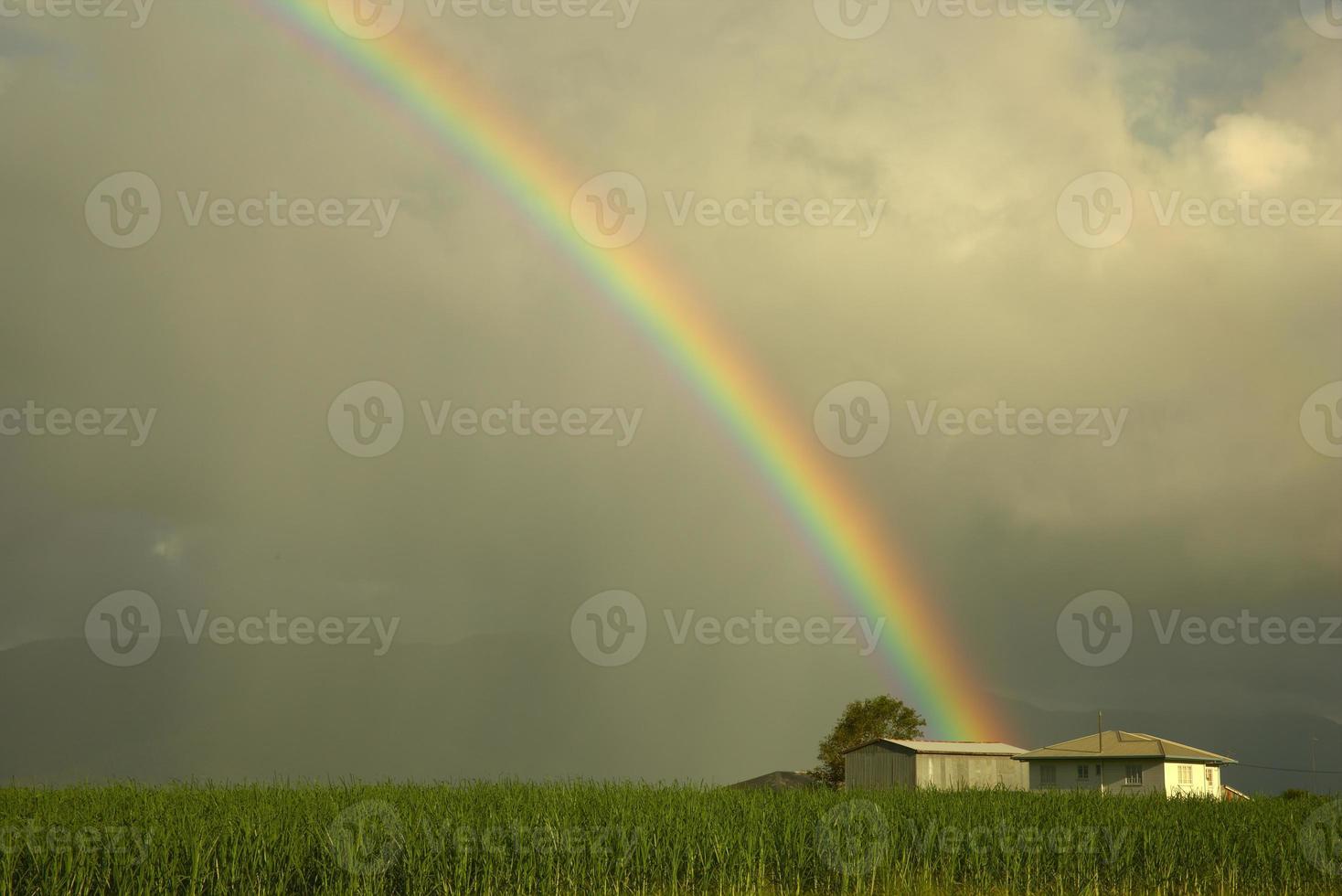 regnbåge över kanfält foto