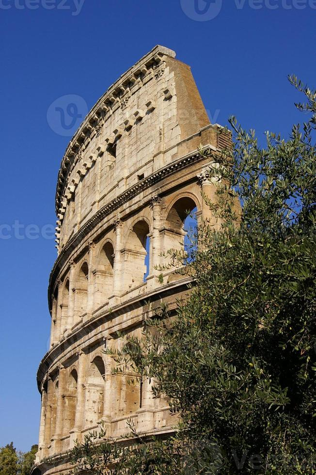 romersk coliseum foto