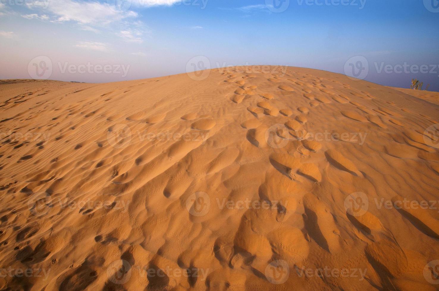 öken, sanddyner vid solnedgången foto