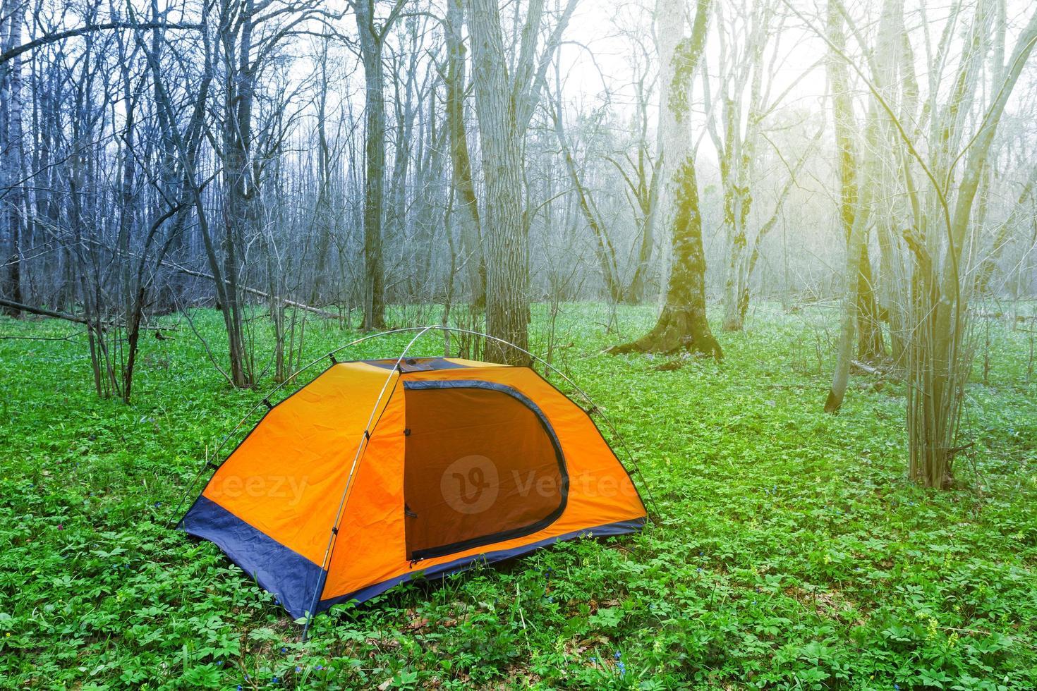 turistläger i en grön vårskog foto