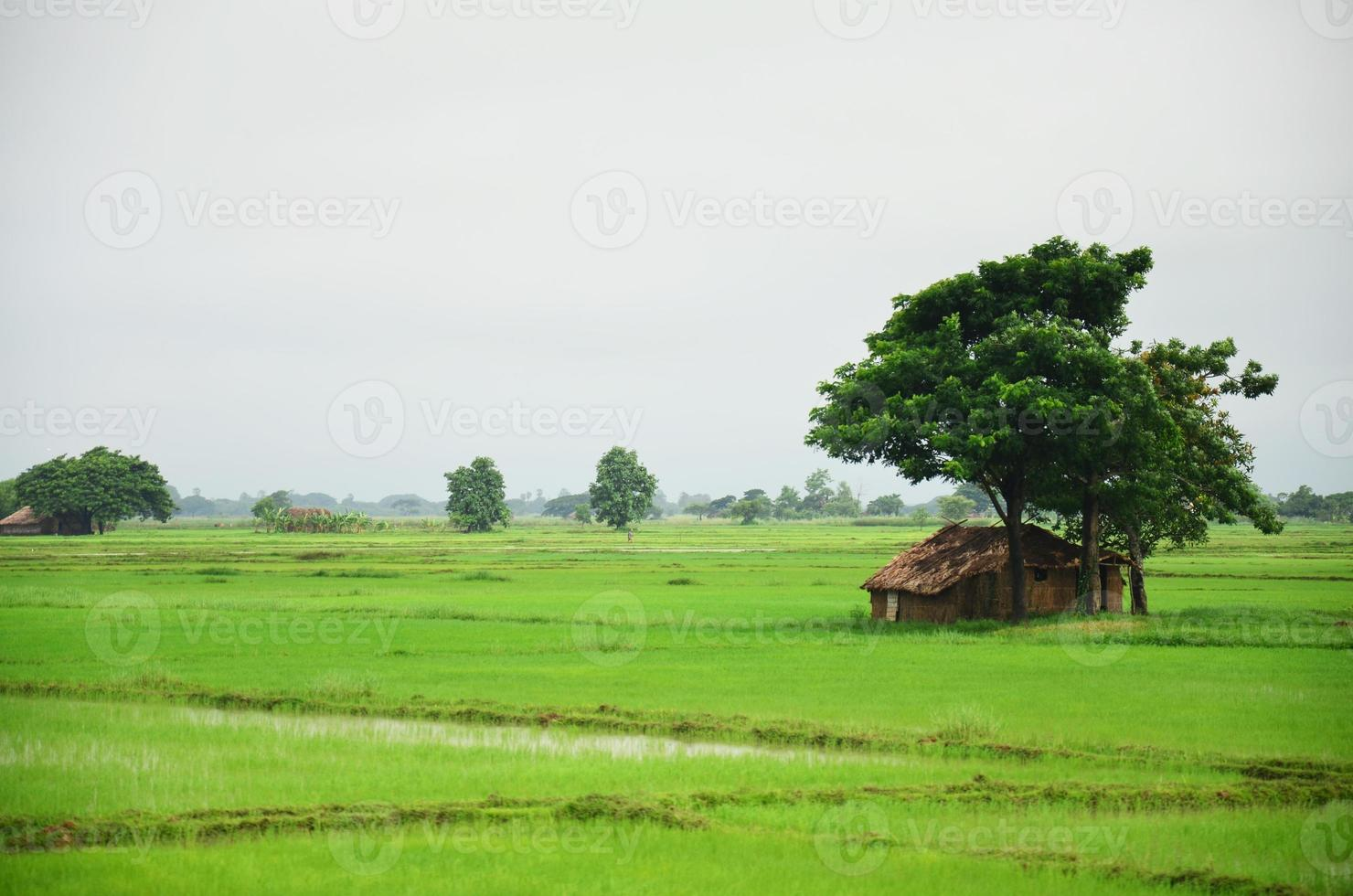 hus på risfält som ligger i Bago, Myanmar foto