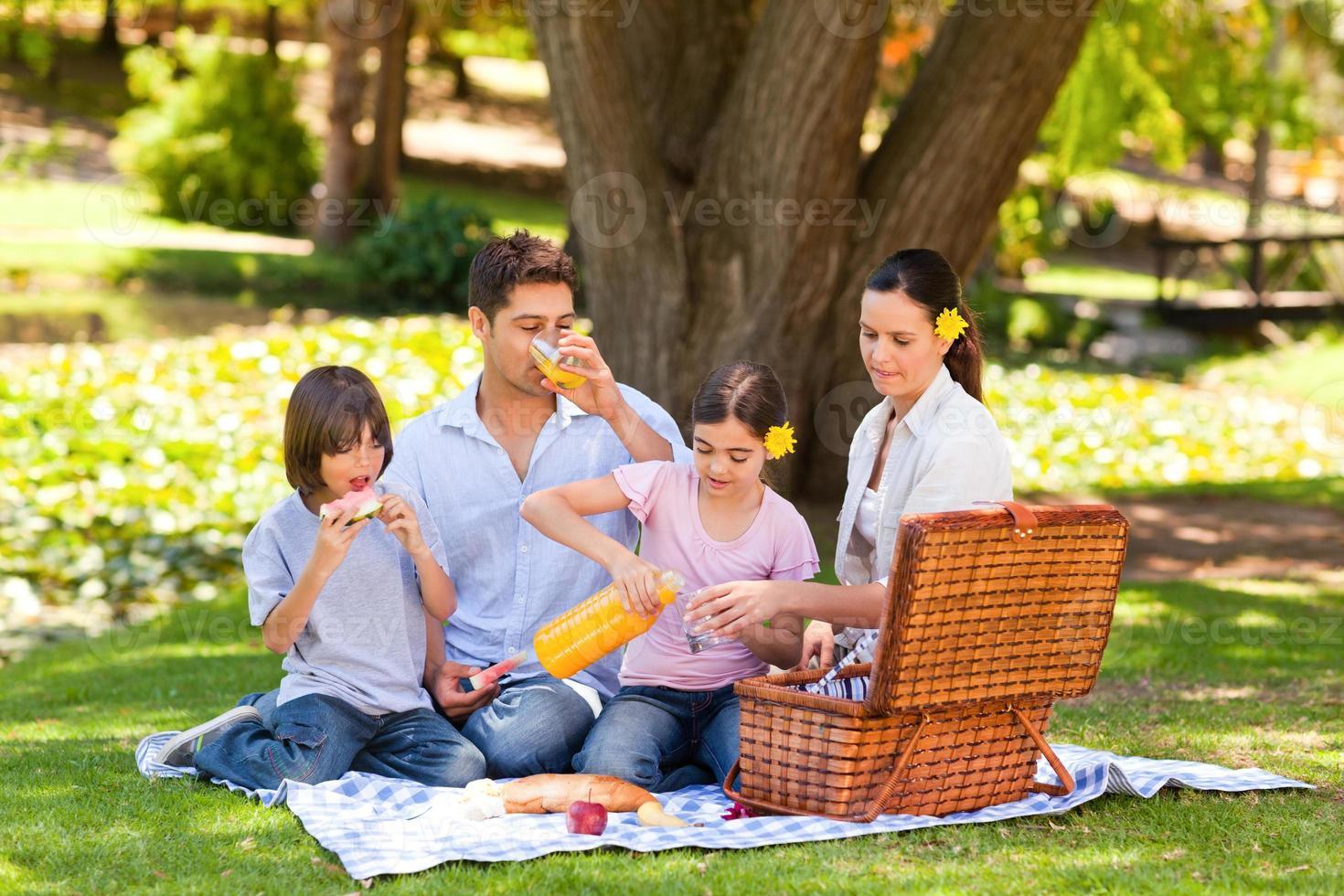 härlig familj som picknick i parken foto