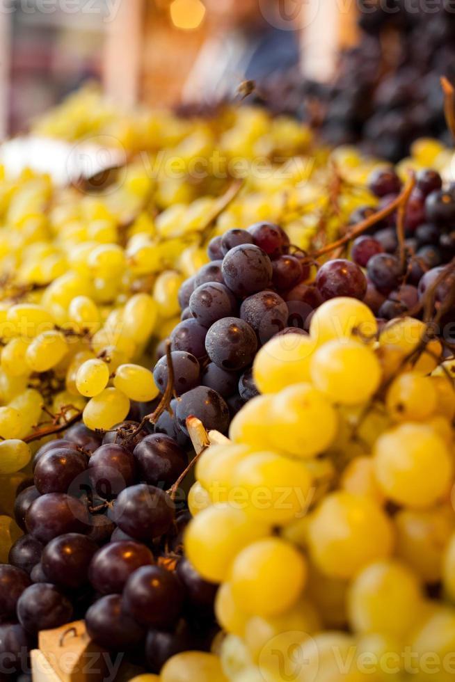 gröna och röda druvor foto