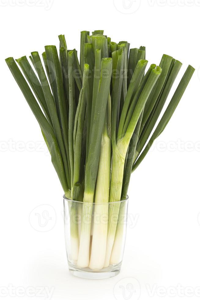grönlök foto