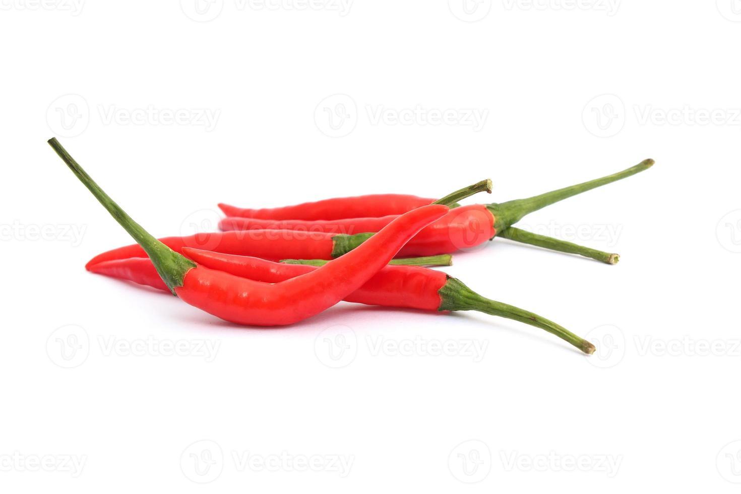 röd chilipeppar på vit bakgrund foto