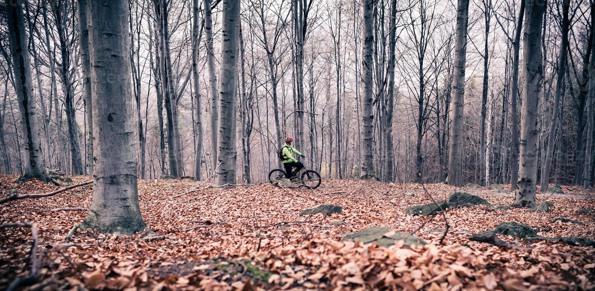 mountainbiker på cykelleden i skogen foto