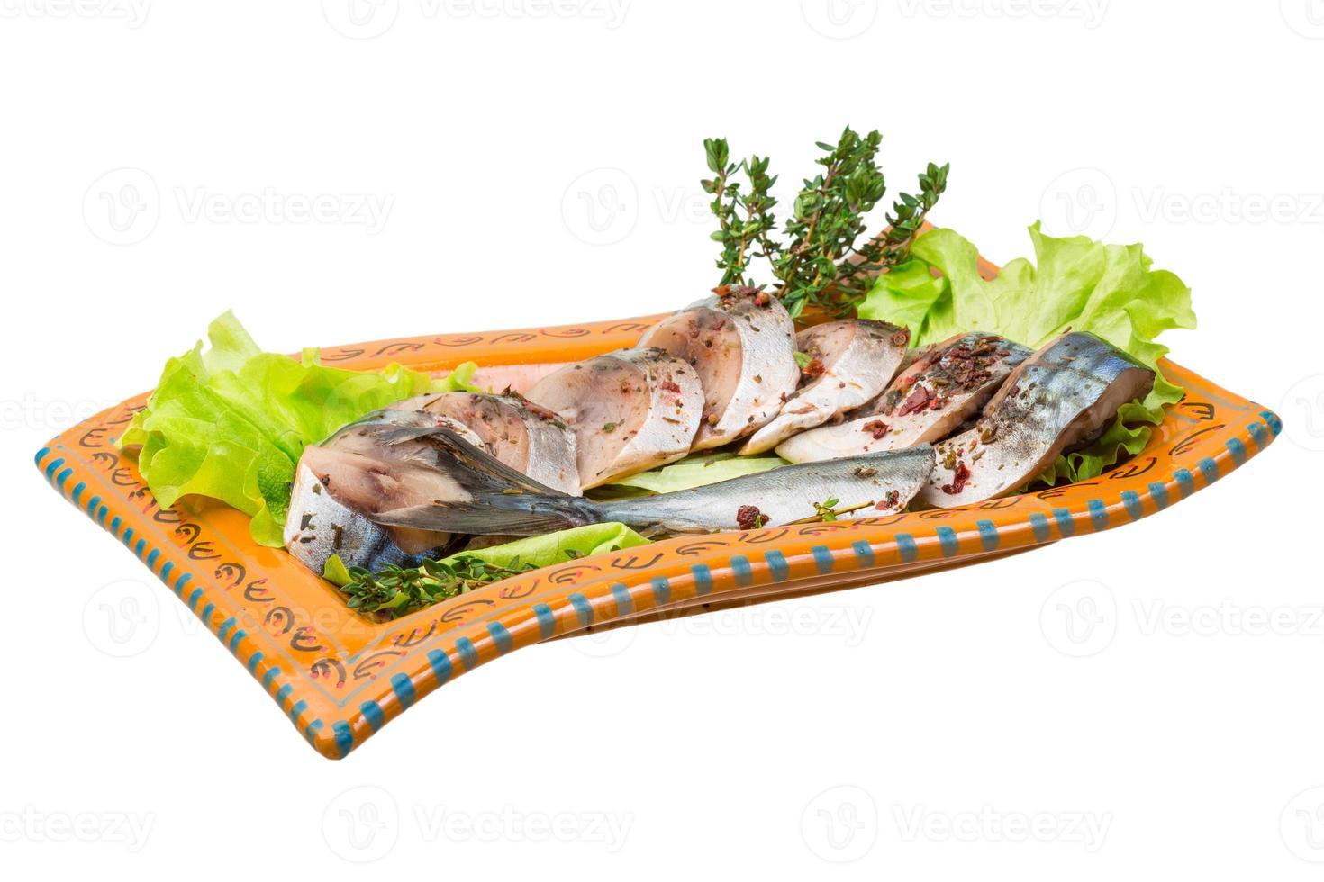 mackerels foto