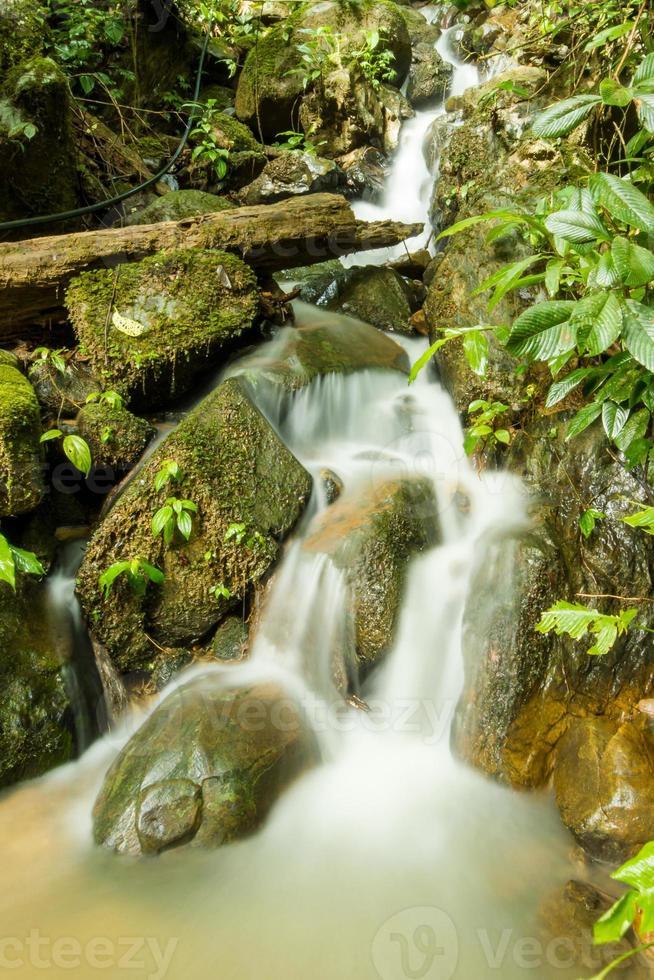 vacker flod foto