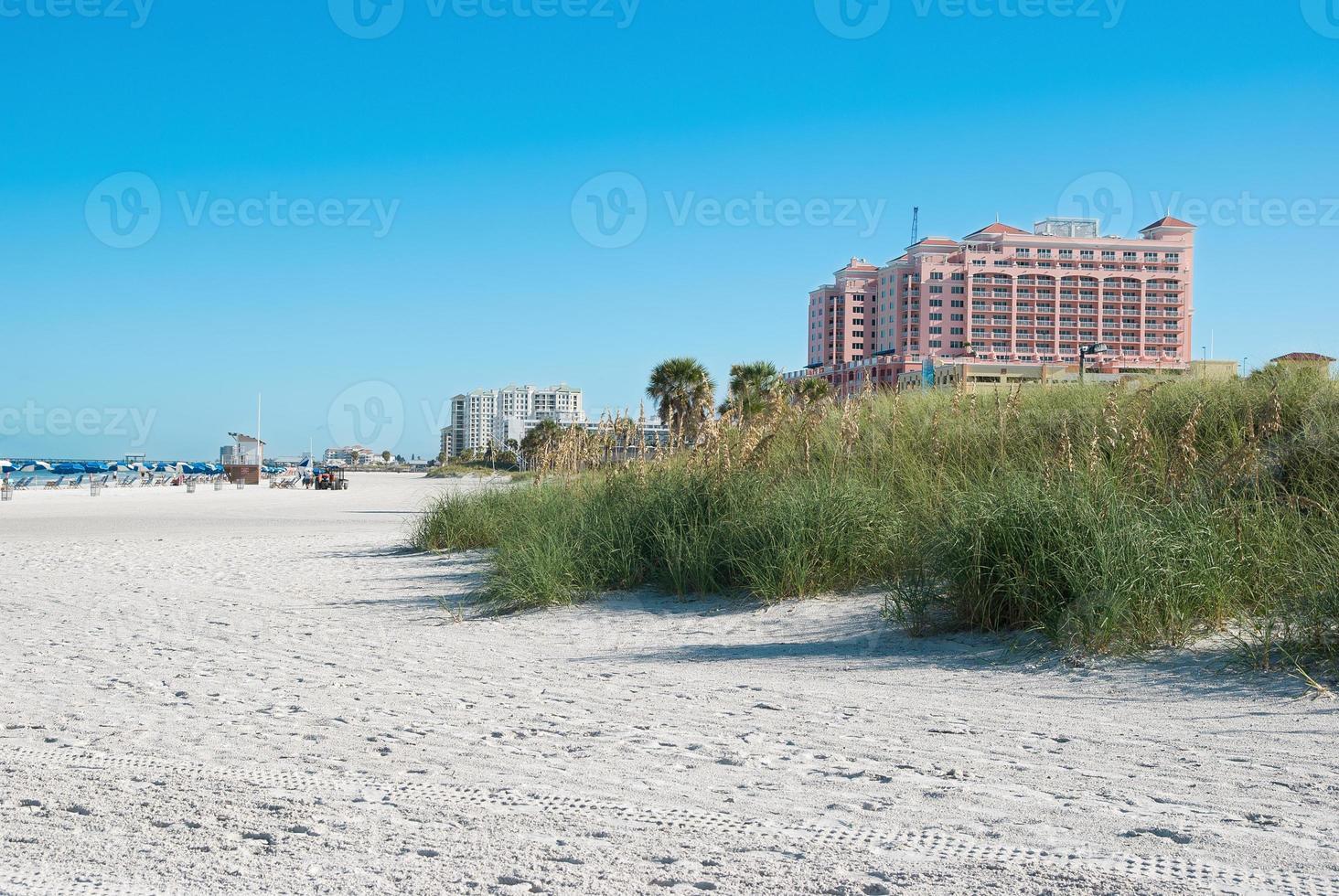 solskenstrand i klarvatten i Tampa Florida USA foto