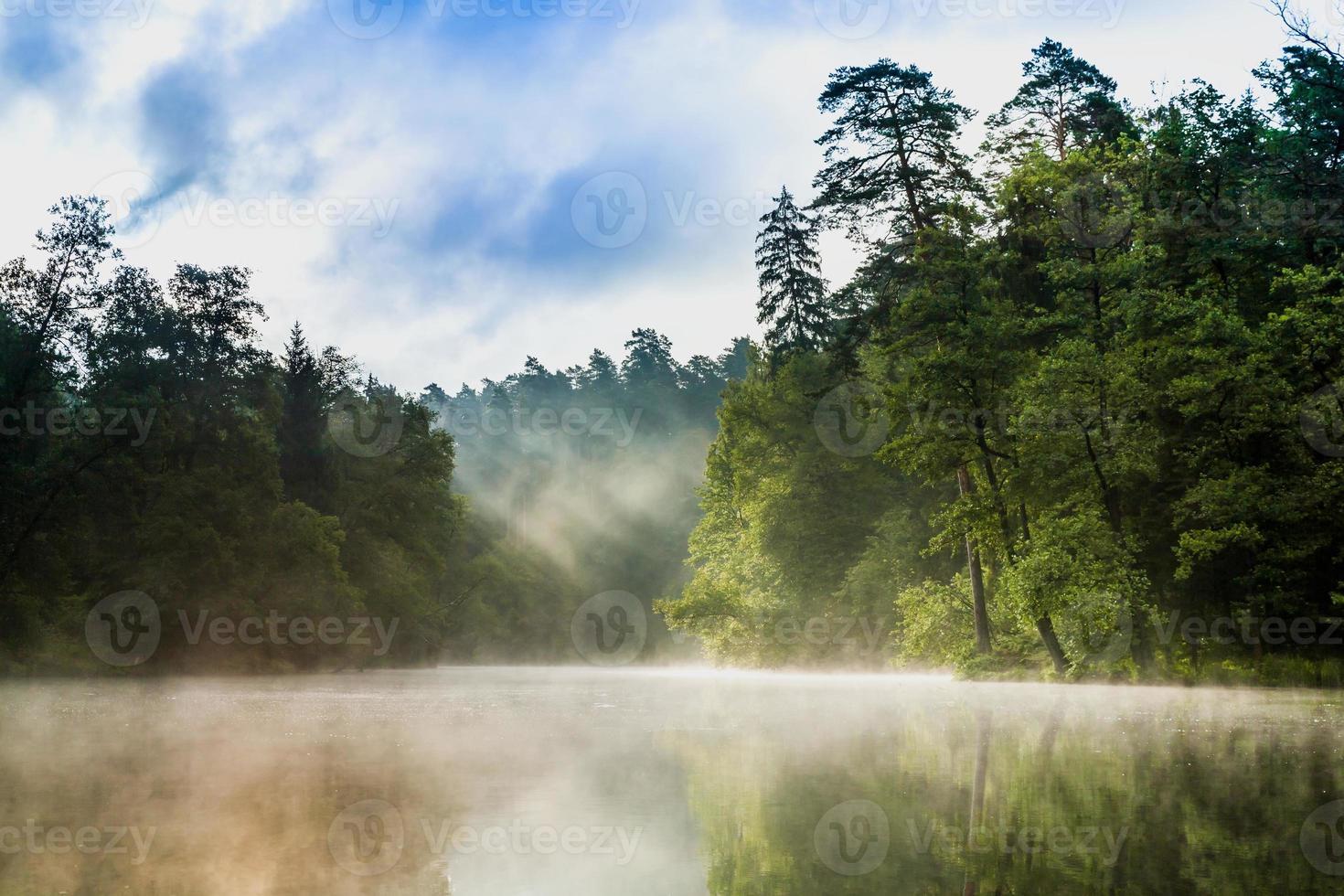 floden łyna foto