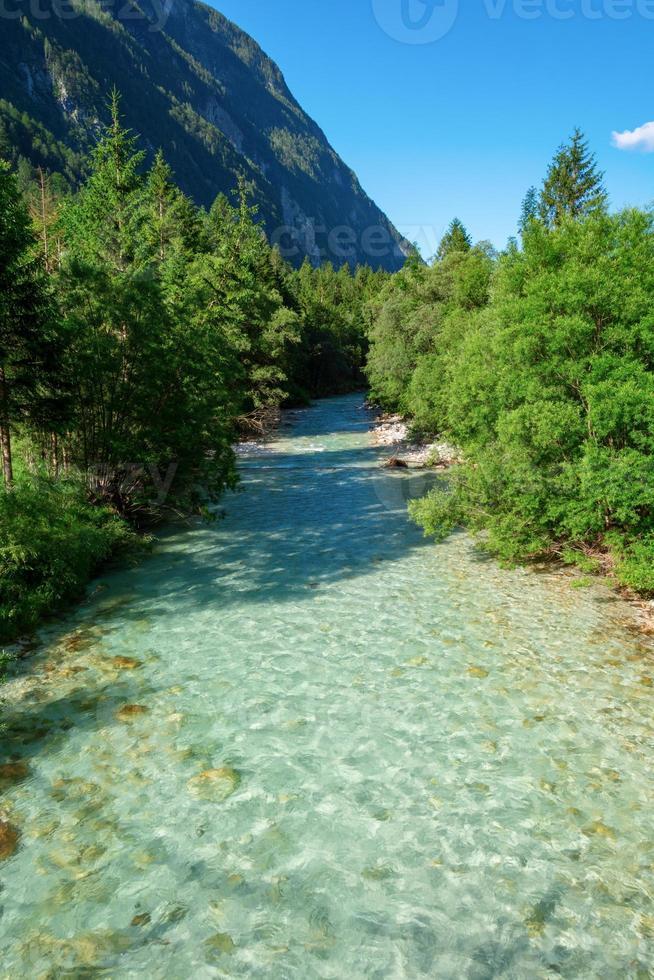 Soca River och träd foto
