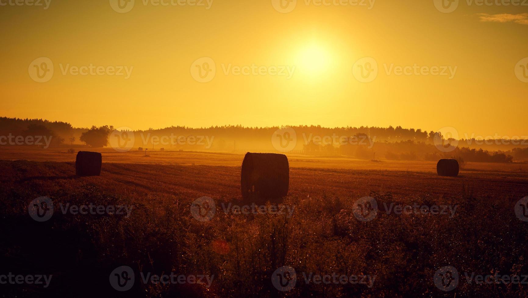 sommarsolnedgång foto