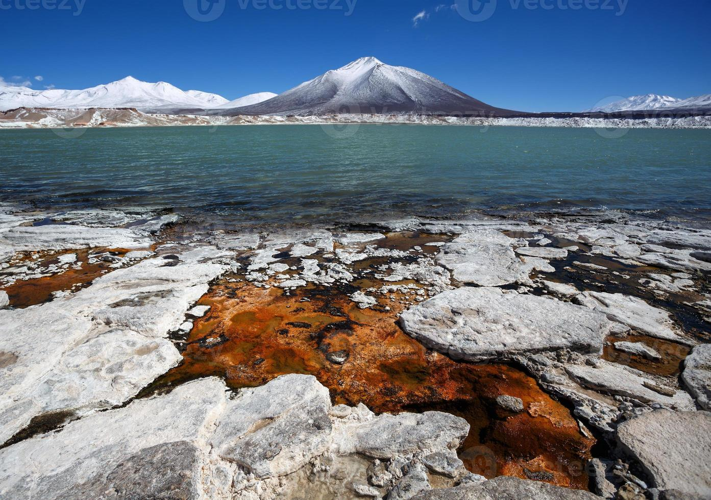 grön lagun (laguna verde), Chile foto