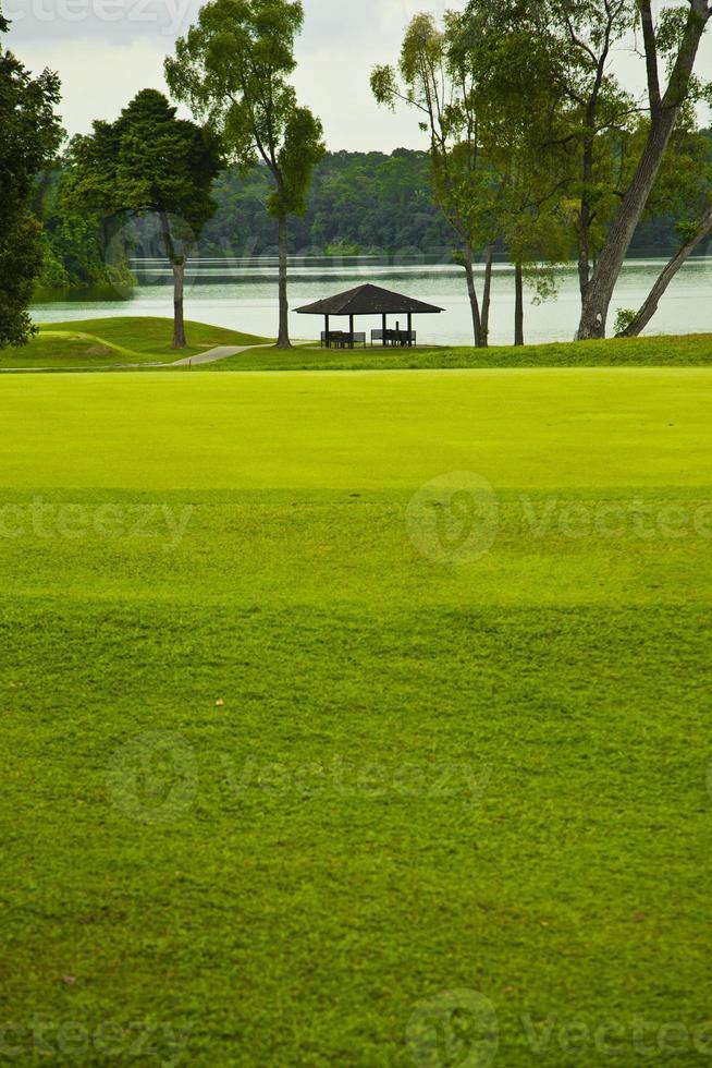 grönt på en golfbana - singapore foto