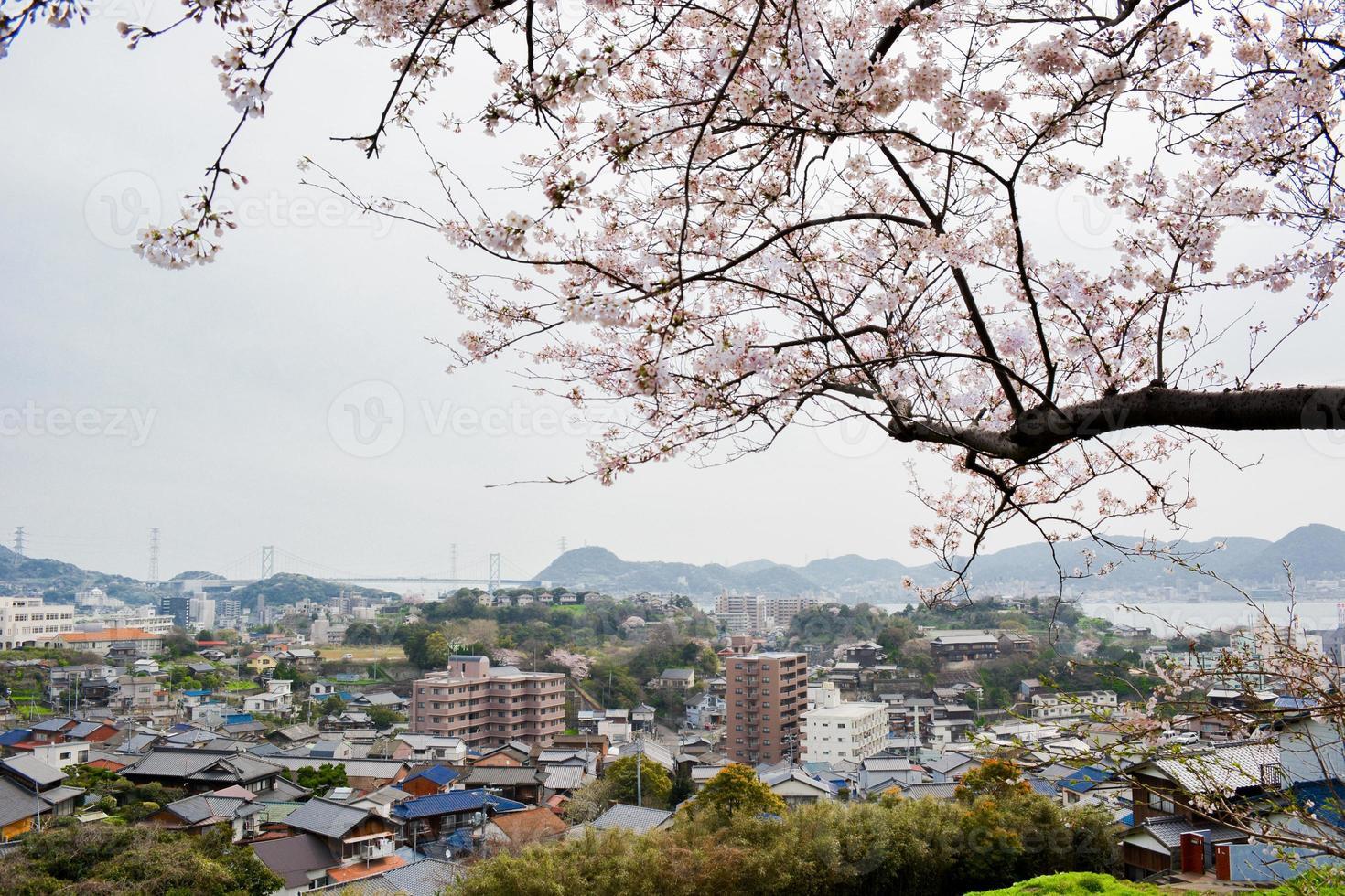 sakura och shimonoseki foto
