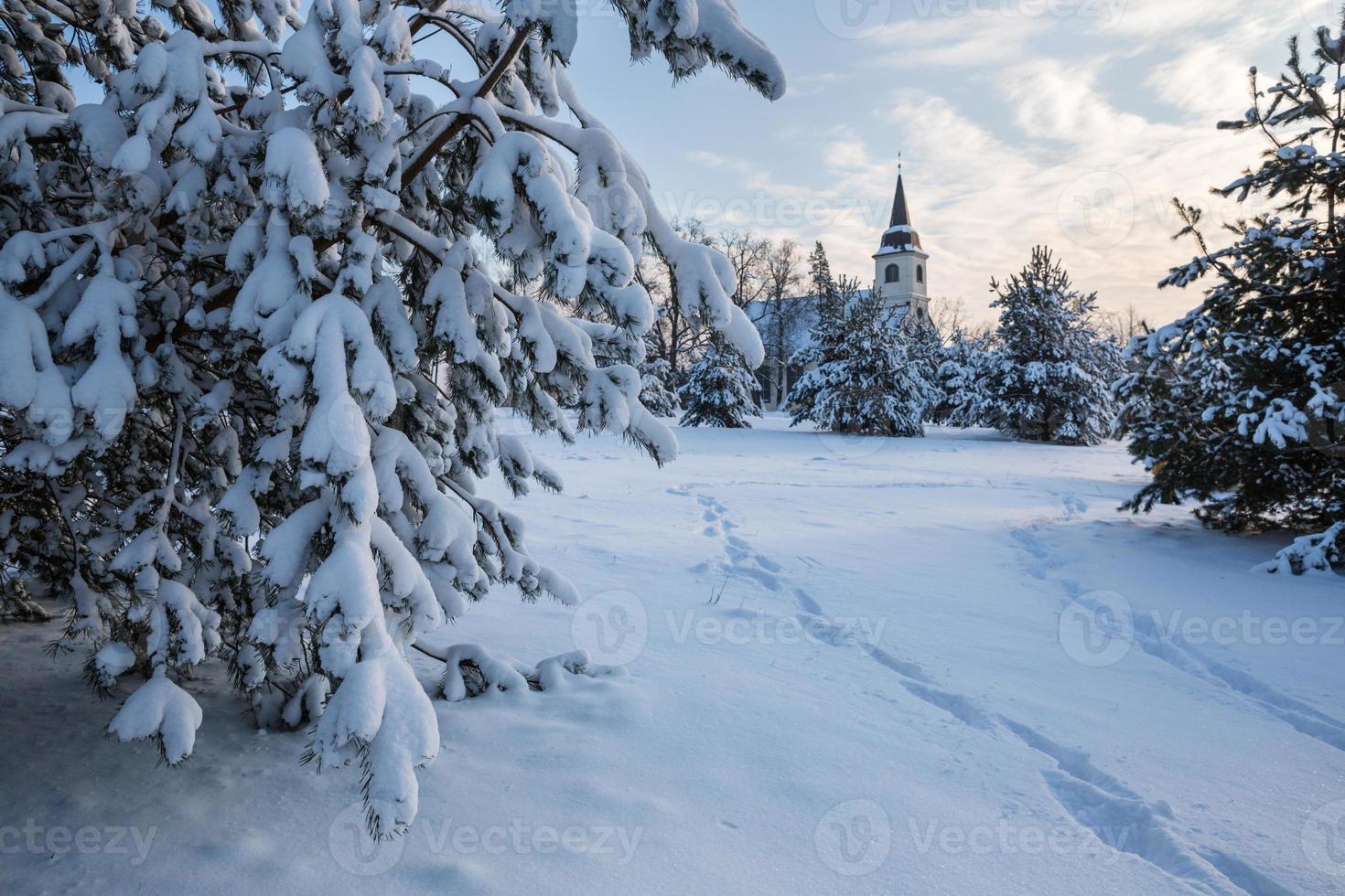 vinterdag foto