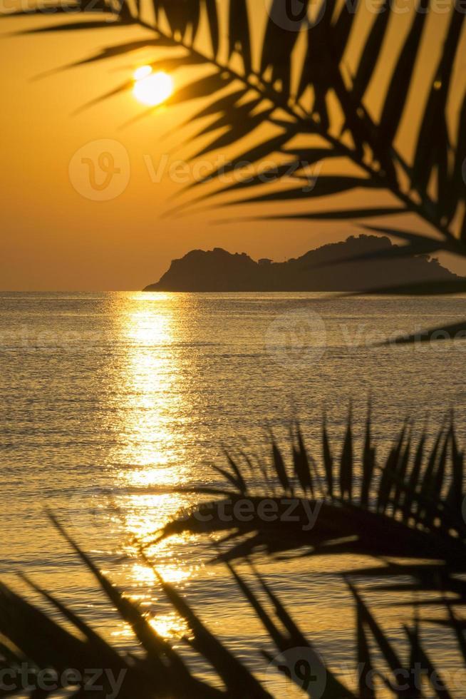 gyllene solnedgång foto