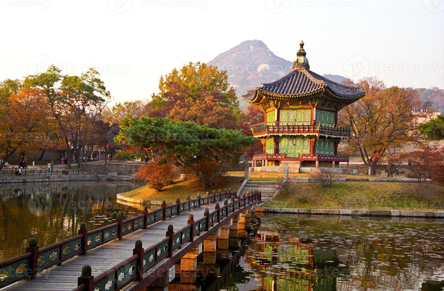 pagod vid solnedgången. foto