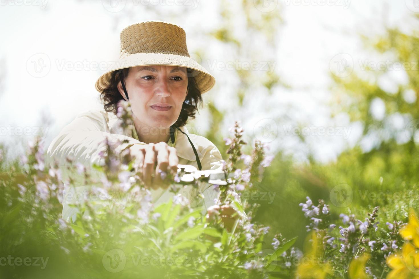vacker kvinna beskära blommor i trädgården foto