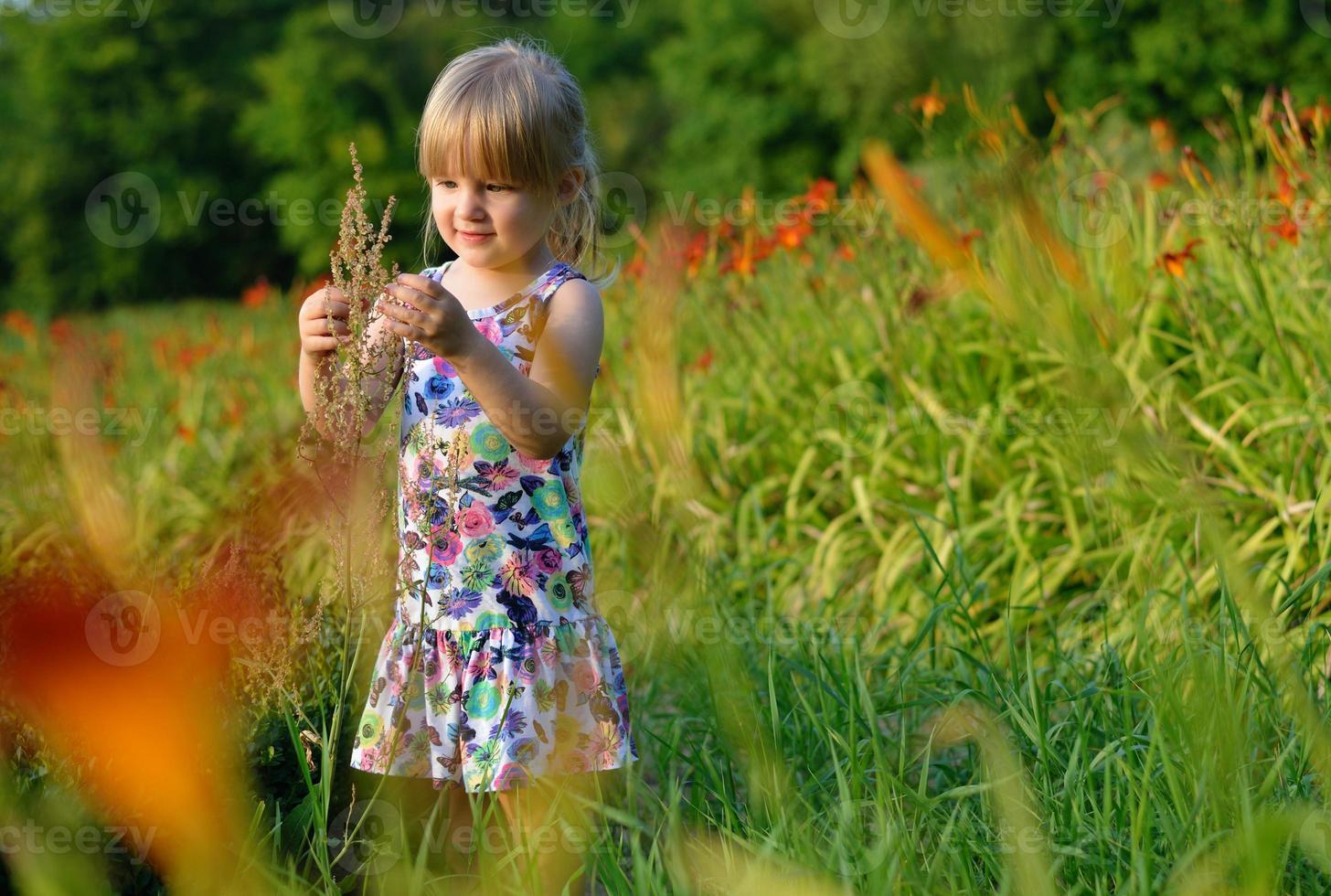 liten flicka på ängen av blommor. foto