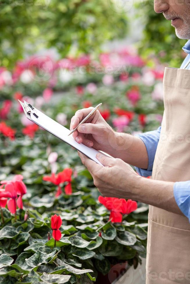 professionell gammal blomsterhandlare i processen foto