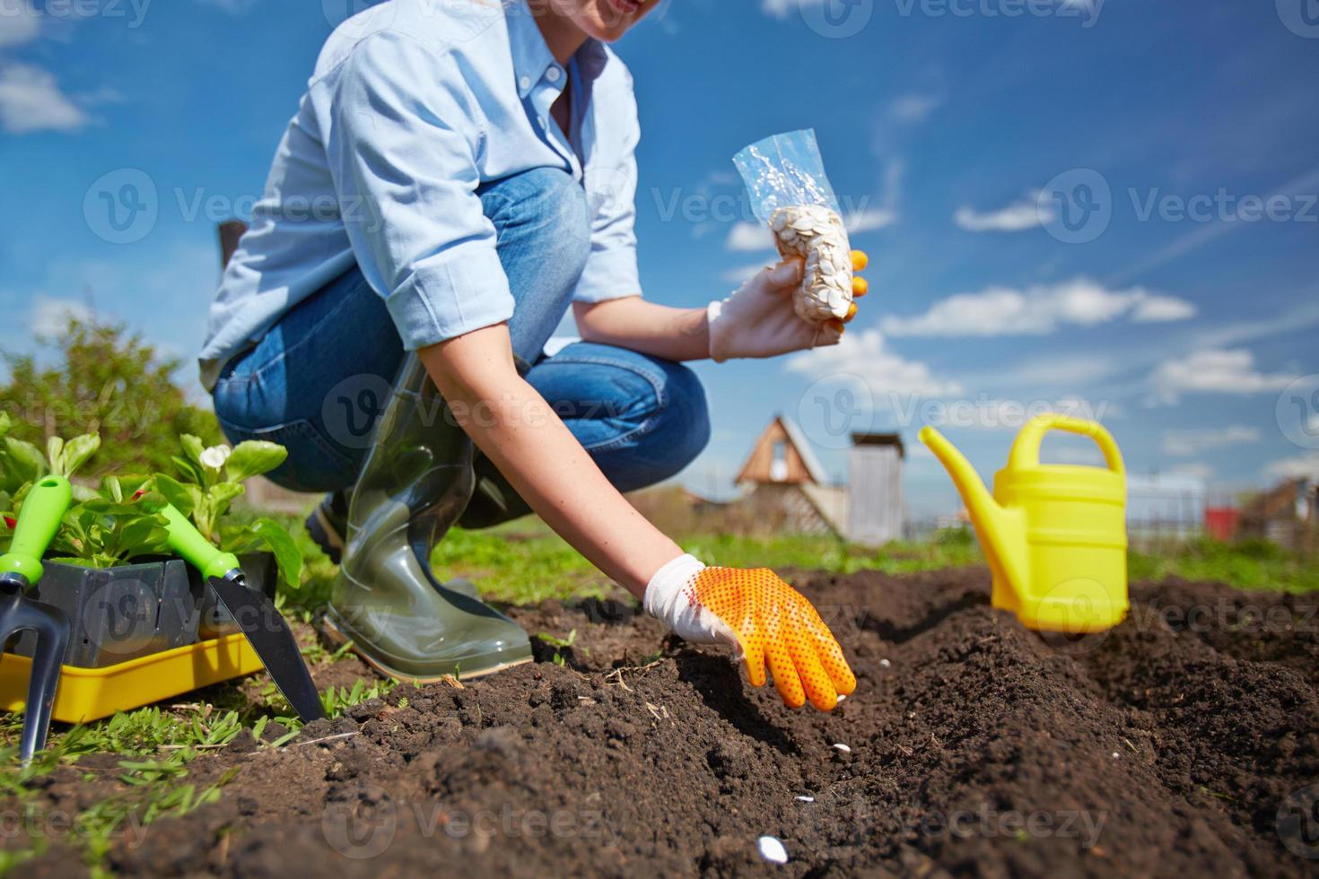 plantering foto