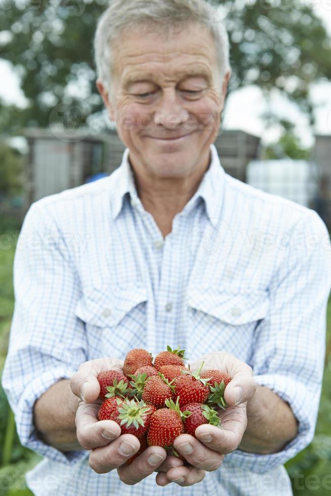 äldre man på tilldelning som håller nyplockade jordgubbar foto