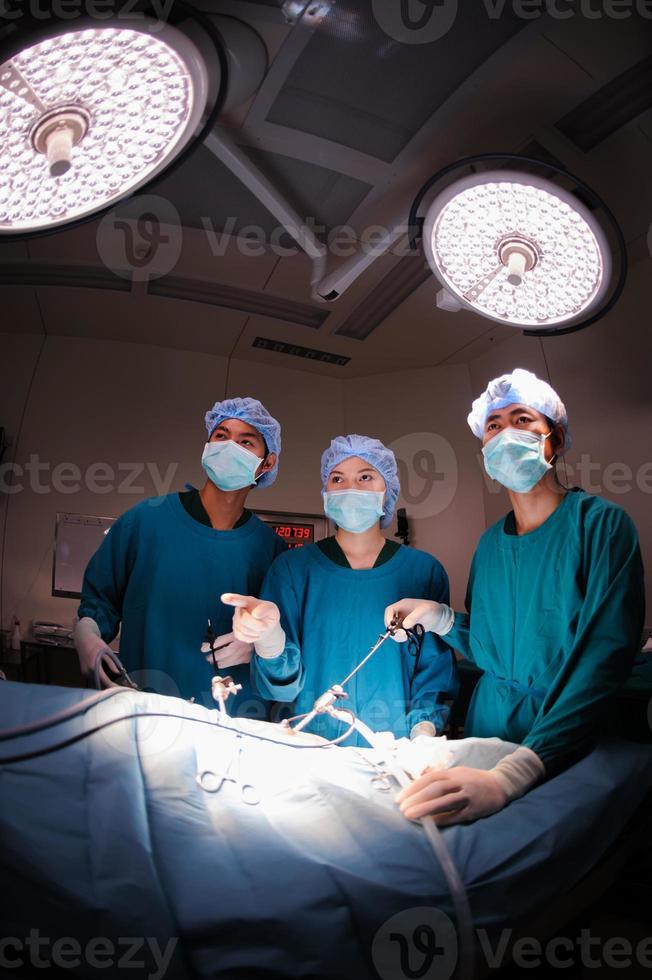 grupp veterinärläkare foto