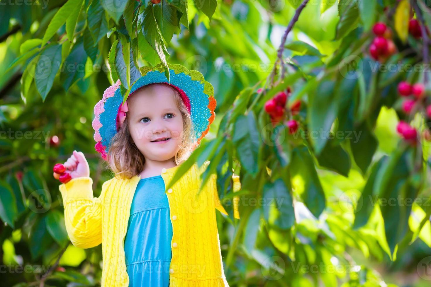 vacker liten flicka som plockar färskt körsbär på en gård foto