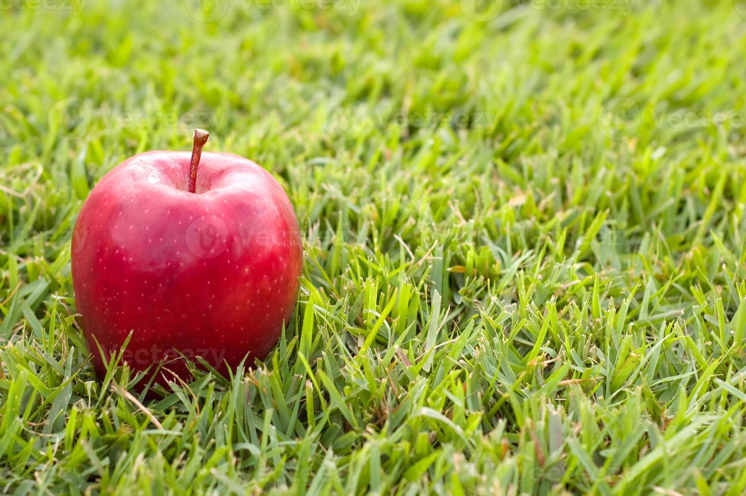 rött äpple på gräs foto