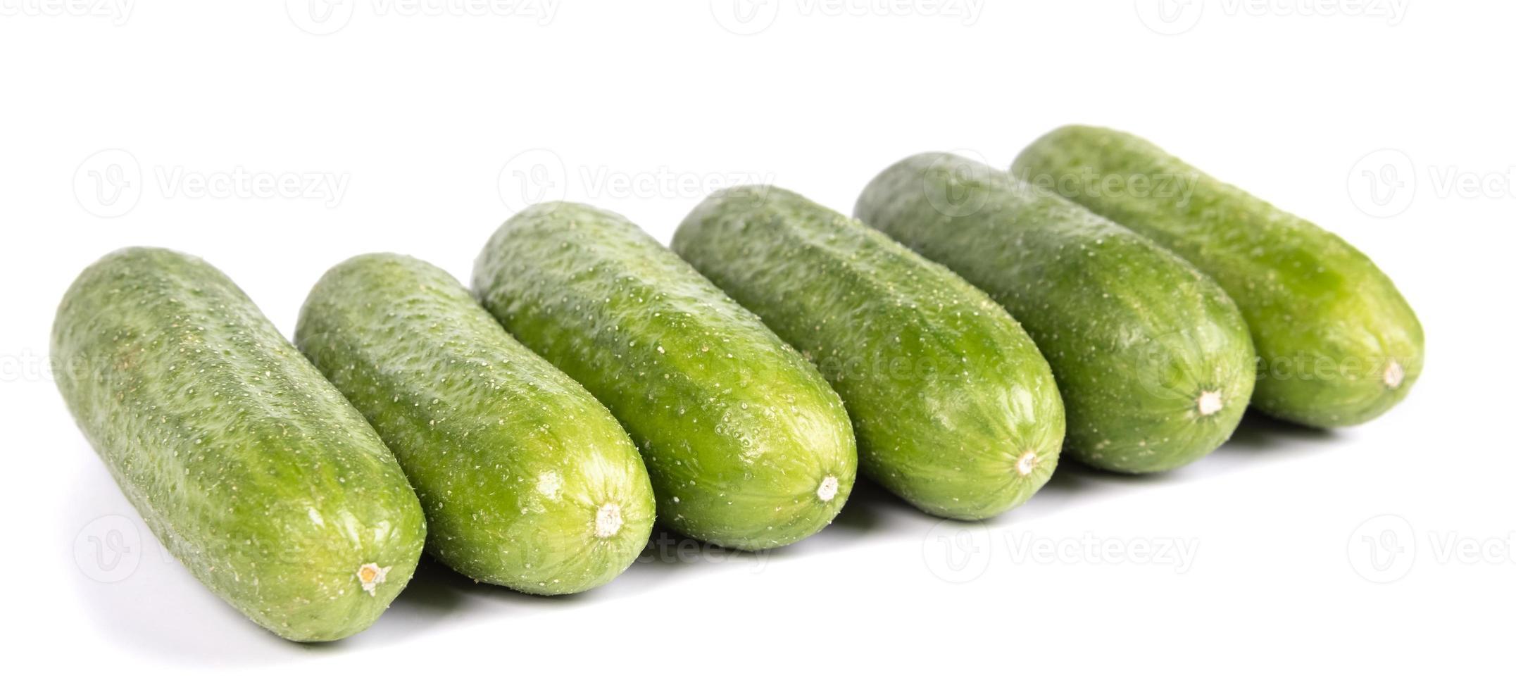 grön gurka foto