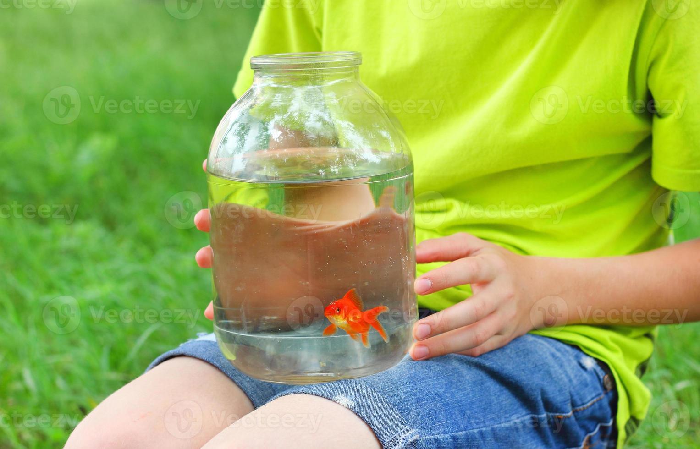 pojke guldfisk begreppet vård foto