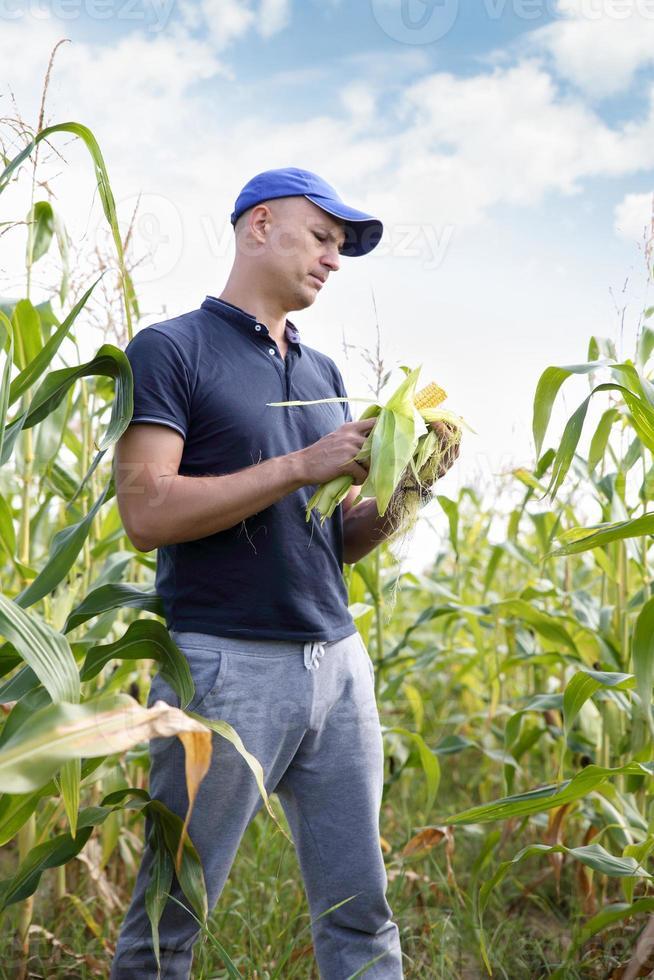 bonde i fält foto