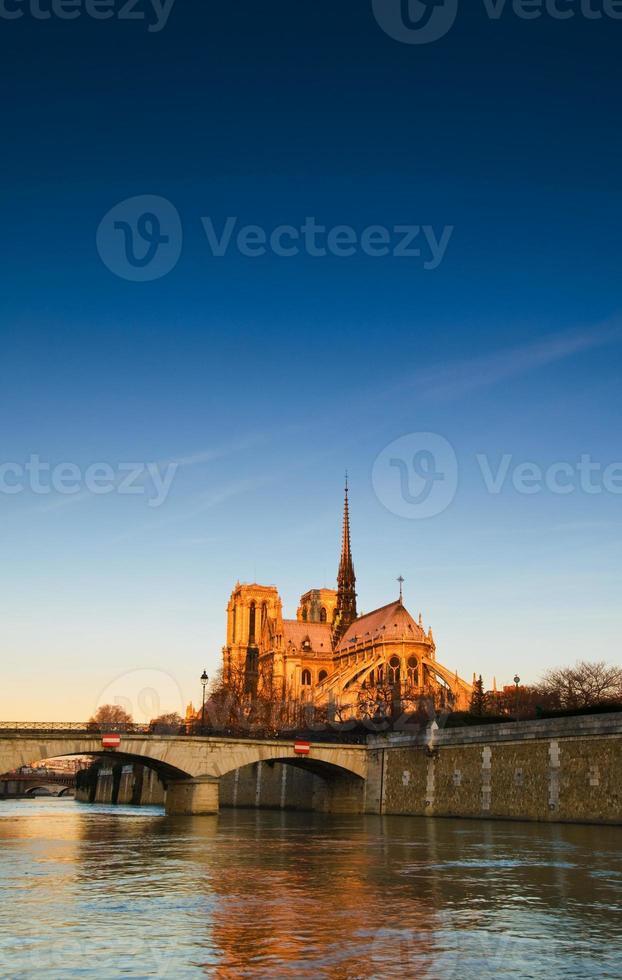 Notre Dame Cathedral Paris - 08 foto