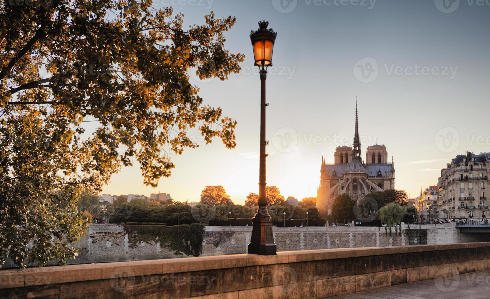 Notre Dame katedral i Paris, Frankrike foto