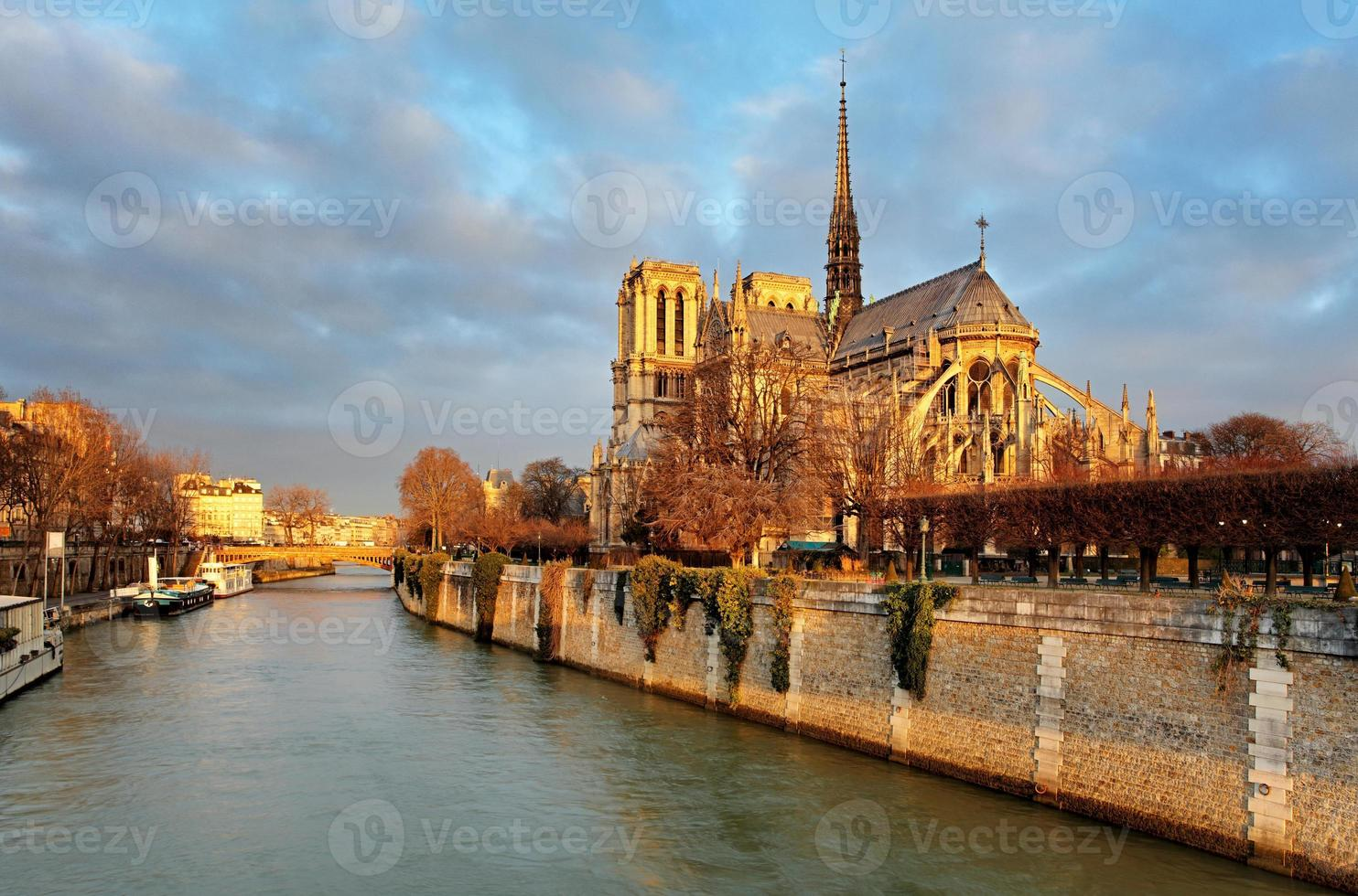 Notre Dame vid soluppgången - Paris, Frankrike foto