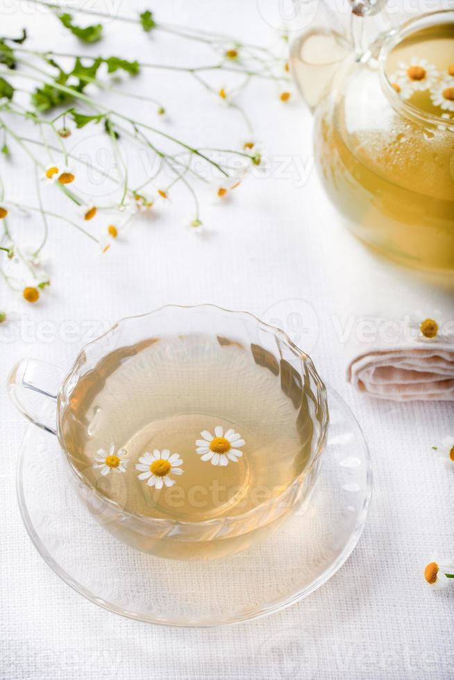 camomile hebal te i en vit kopp med foto