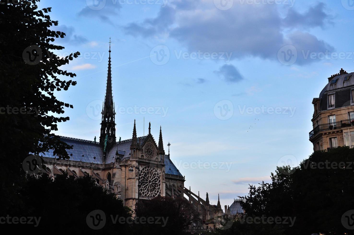 katedralen i Notre Dame i Paris, Frankrike. foto