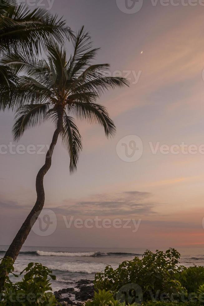 hawai solnedgång foto