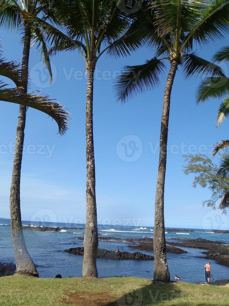 richardson beach foto