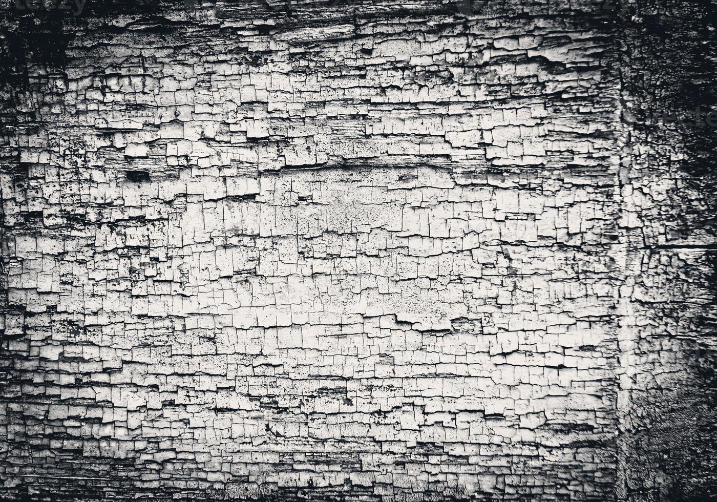 textur. trä foto