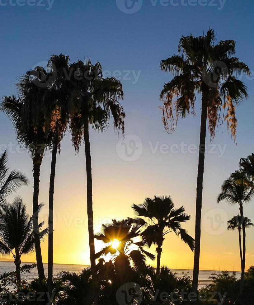 maui solnedgång i hawaii foto