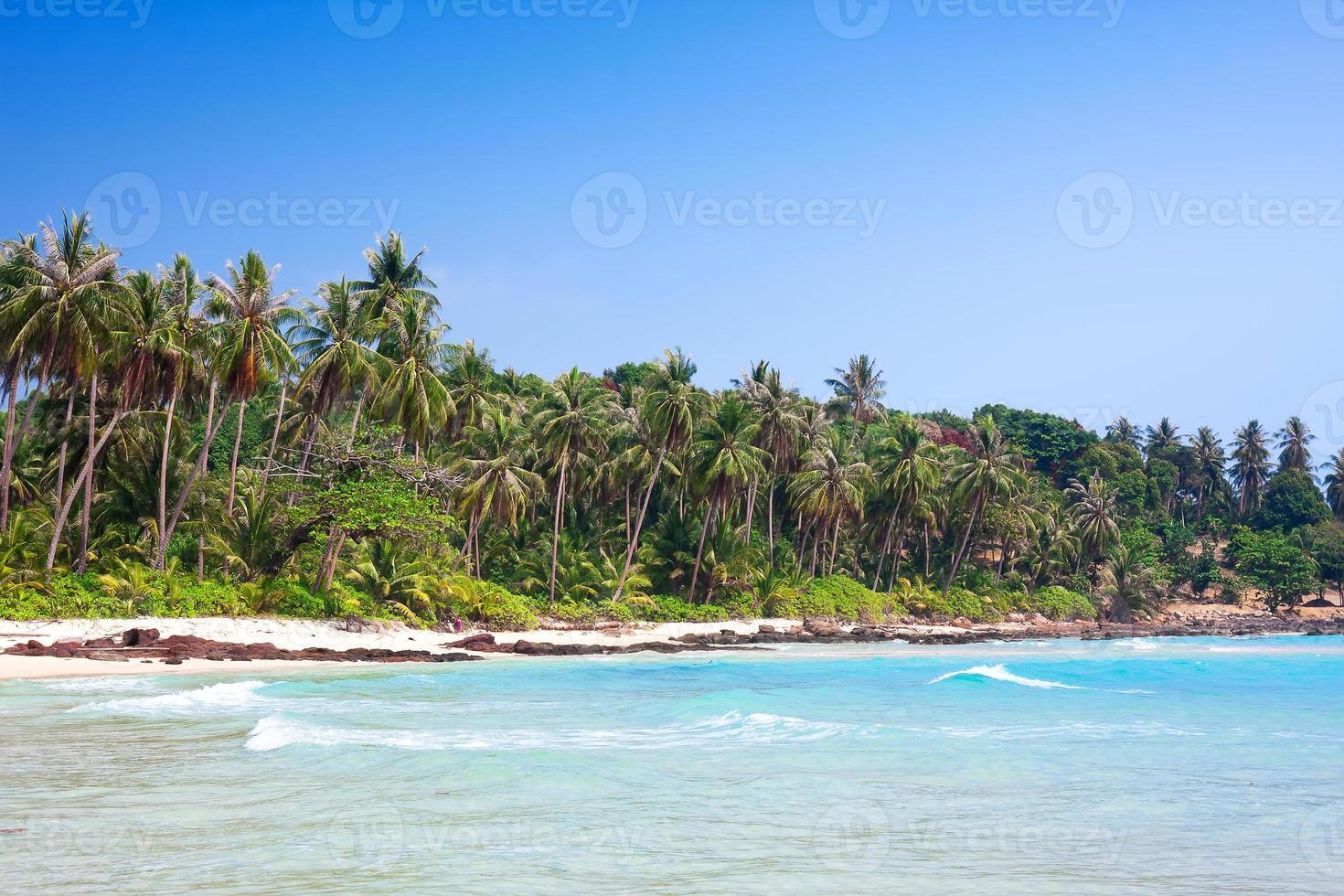 tropisk vit sandstrand med palmer. koh kood, Thailand foto