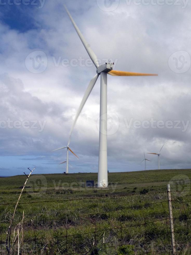 vindkraftverk i hawaii foto